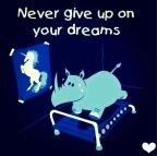 Nikdy sa nevzdávaj svojich snov